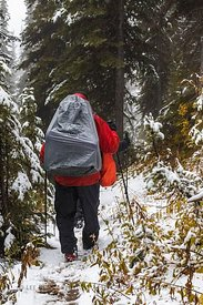 Backpackers along Floe Lake Trail in Kootenay National Park
