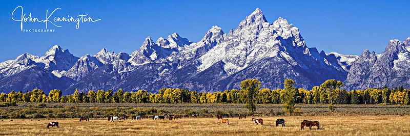 Grand Pasture Panoramic, Grand Teton National Park, Wyoming