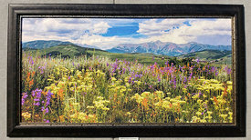 00755_Frame_Example_(Wildflowers_Above_Crested_Butte_24x48_Aluminum)
