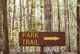 Park Trail Sign