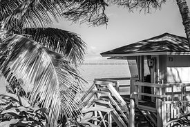 Maui Lifeguard Tower Black and White Photo
