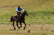 Horse riding, Lesotho