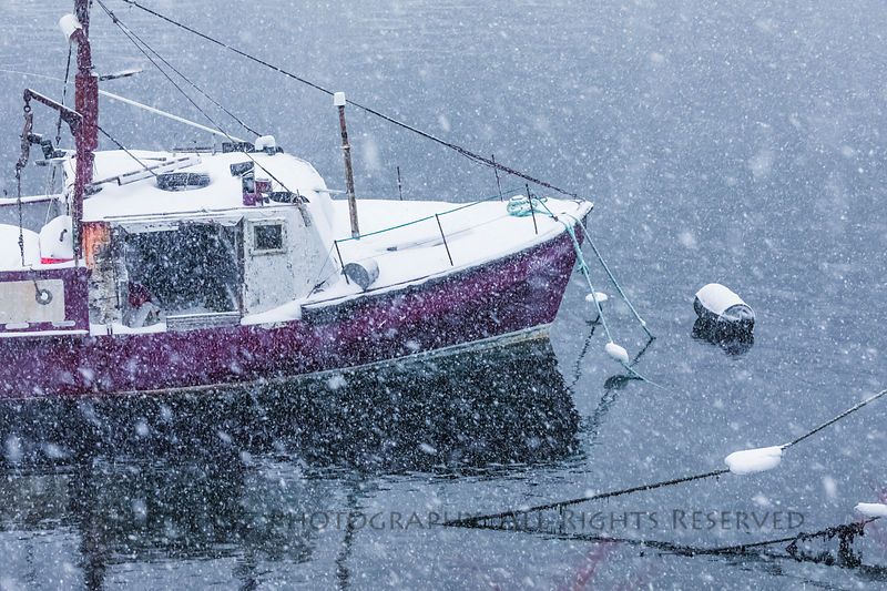 Fishing boat during snowstorm in Francois