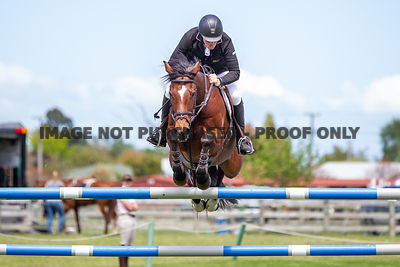 ESNZ Premier League Horse Grand Prix