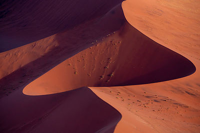 Namib Dune Abstract 254