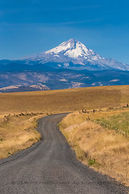 Mount Hood Viewed from the Dalles Mountain Road