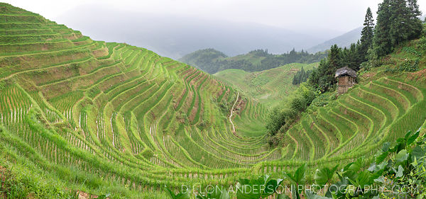 The Longji (龙脊)Rice Terraces, and the Ping'an village of the Zhuang ethnic minority.