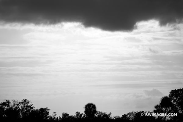EVERGLADES NATIONAL PARK FLORIDA BLACK AND WHITE