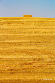 HAY BALE HILL SUMMER HARVEST PALOUSE REGION EASTERN WASHINGTON STATE LANDSCAPE