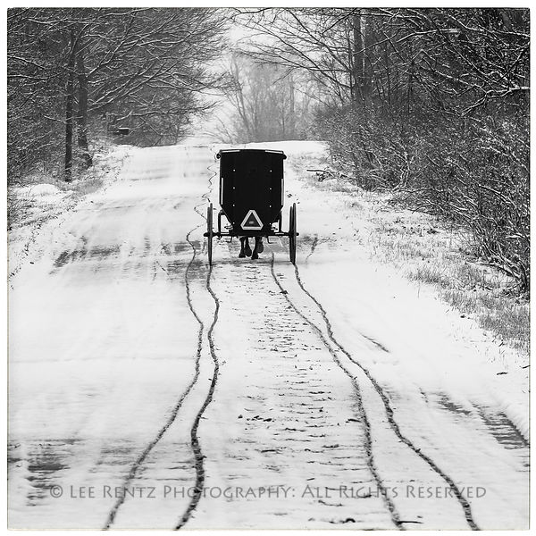 Amish buggy tracks after a light snowfall