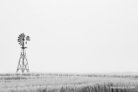 FARM WINDMILL PALOUSE EASTERN WASHINGTON STATE BLACK AND WHITE