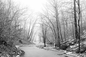 WINTER ROAD HIGHLAND PARK ILLINOIS CHICAGO NORTHSHORE SUBURBS CHICAGOLAND WINTER BLACK AND WHITE