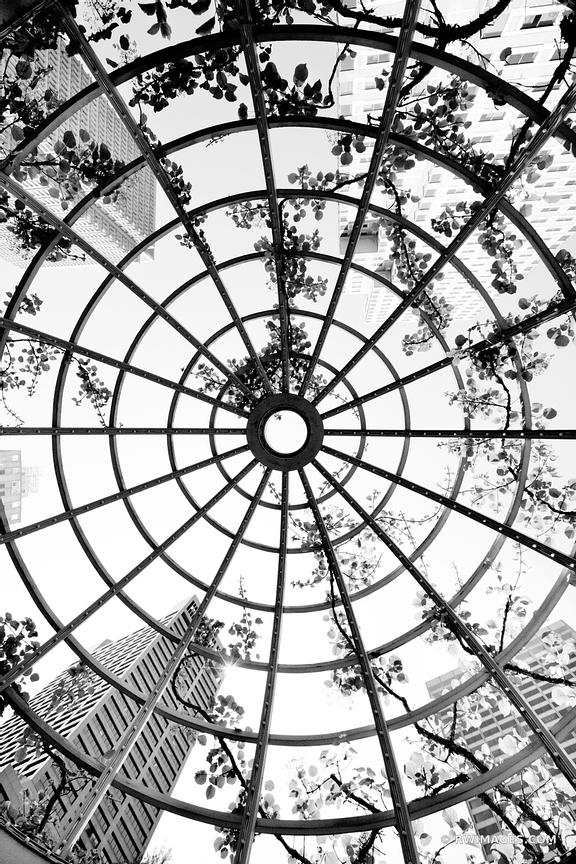 LATTICE CUPOLA POST OFFICE SQUARE BOSTON BLACK AND WHITE VERTICAL