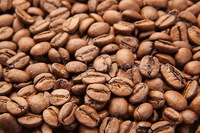 Medium roast Arabica beans