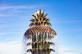 PINEAPLLE FOUNTAIN WATERFRONT PARK CHARLESTON SOUTH CAROLINA
