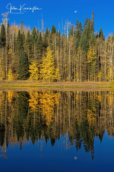 Aspen & Moon Reflections, Rowdy Lake, Uncompahgre National Fores