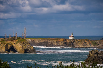 oregon_coast-148