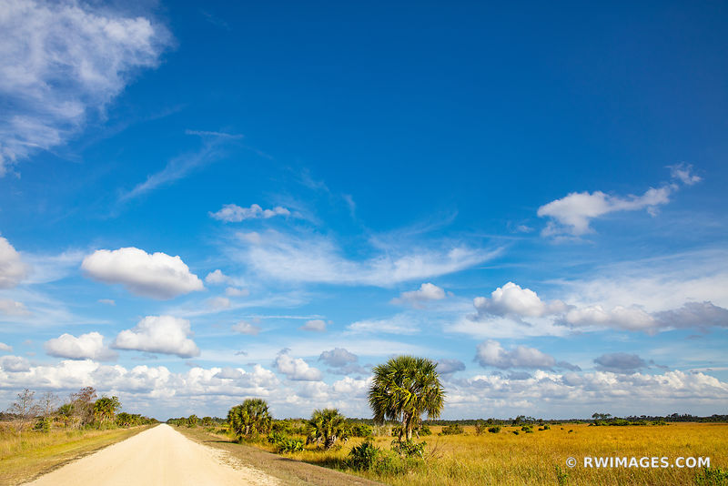 UPPER WAGONWHEEL ROAD BIG CYPRESS NATIONAL PRESERVE EVERGLADES FLORIDA BACKROADS