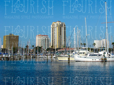 002_Flourish_BG_City-2_LowRes72dpi