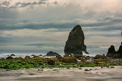 oregon_coast-9