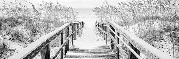 Beach Boardwalk Pensacola Black and White Panorama Photo
