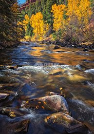 Fall on the San Miguel river