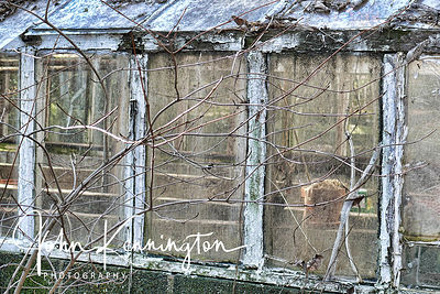 Greenhouse WIndows No 2, Summit, New Jersey