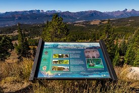 Interpretive Sign along Beartooth Highway