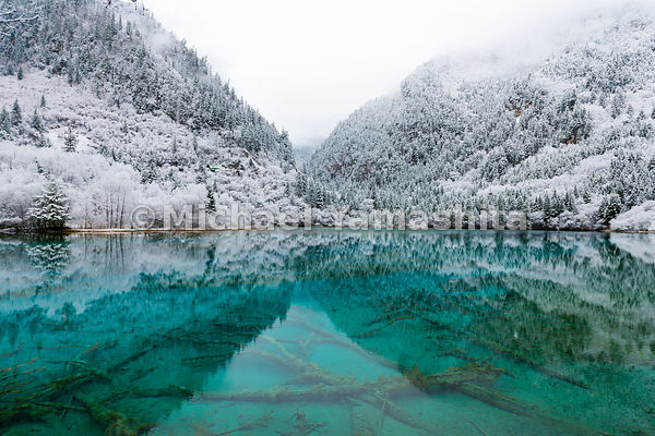Once extensively logged, Jiuzhaigou is now China's most popular national park. The reserve protects 278 square miles of what ...