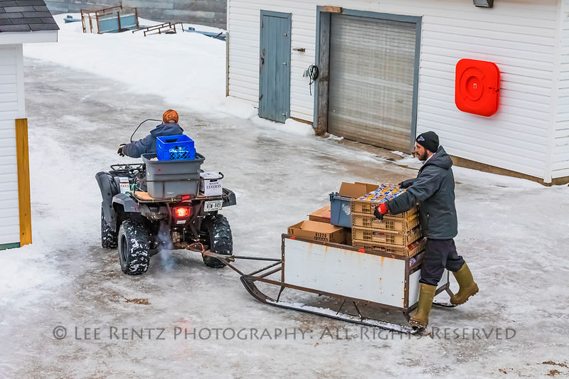 Transporting cargo from dock to store by ATV at the outport of Grey River