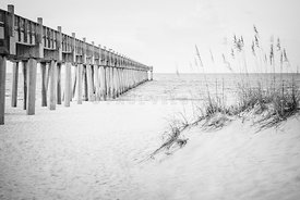Pensacola Gulf Pier and Beach Grass Black and White Photo