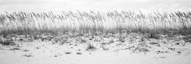 Pensacola Beach Beachscape Black and White Panorama Photo