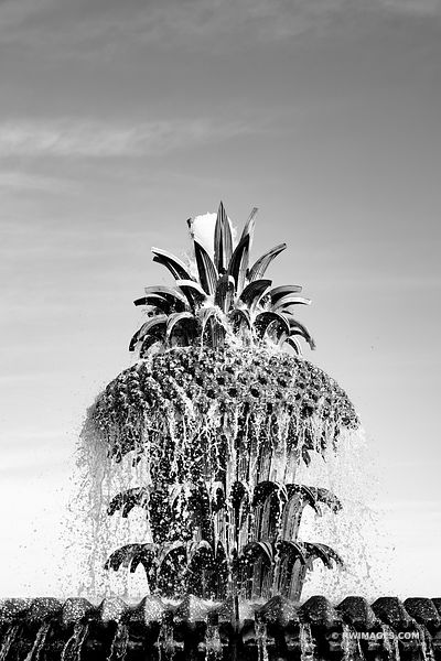 PINEAPLLE FOUNTAIN WATERFRONT PARK CHARLESTON SOUTH CAROLINA BLACK AND WHITE