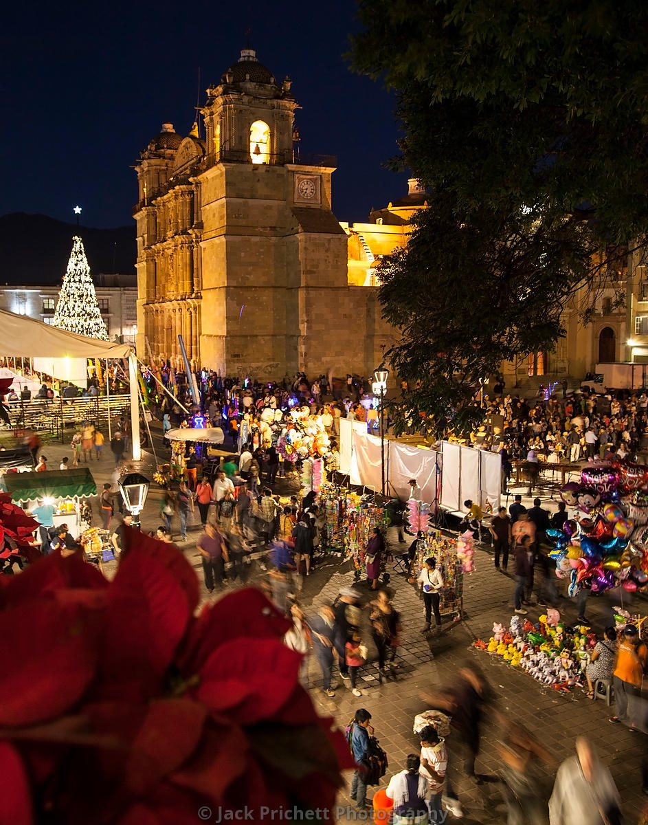 Oaxaca Cathedral and Zocalo, Christmas