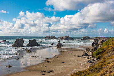 oregon_coast-207