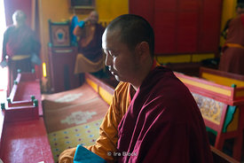 A monk praying at Gandantegchinlen Monastery, Monglia's largest functioning Buddhist monastery in Ulaanbaatar.  The Tibetan n...
