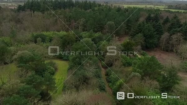 Drone Video Englisg Forest