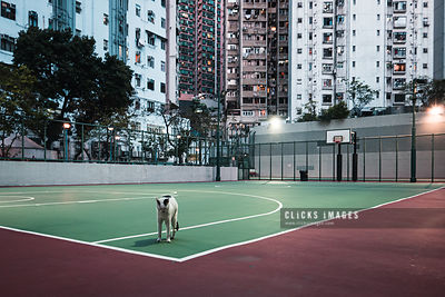 Closed Children Playgrounds For Social Distancing In Hong Kong