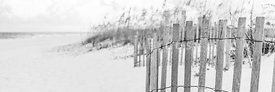 Pensacola Beach Fence Black and White Panoramic Photo
