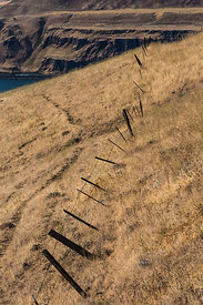 Fence along Dalles Mountain Road