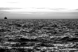 BEFORE SUNRISE LAKE MICHIGAN CHICAGO ILLINOIS BLACK AND WHITE