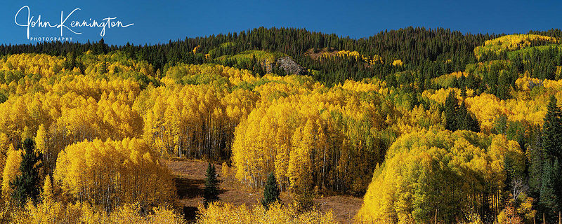 Peak Color Panoramic, Gunnison National Forest, Colorado