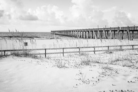 Pensacola Gulf Pier and Beach Fence Black and White Photo