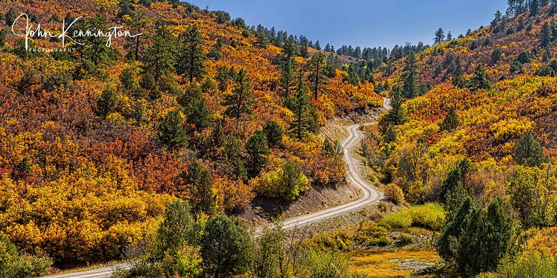 Autumn Road, Ridgway (Panoramic), Colorado