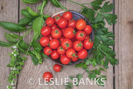 Cherry Tomatoes and Herbs