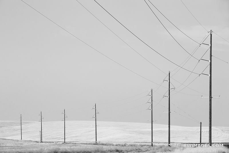 POWER LINES PALOUSE WASHINGTON BLACK AND WHITE LANDSCAPE