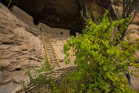Exploring Mogollon Ruins in Gila Cliff Dwellings National Monument
