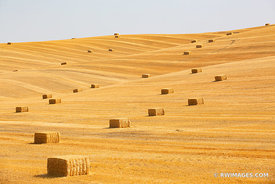 HAY BALES SUMMER HARVEST PALOUSE REGION EASTERN WASHINGTON STATE LANDSCAPE