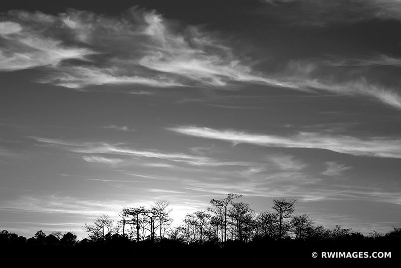 SUNSET EVERGLADES FLORIDA BLACK AND WHITE