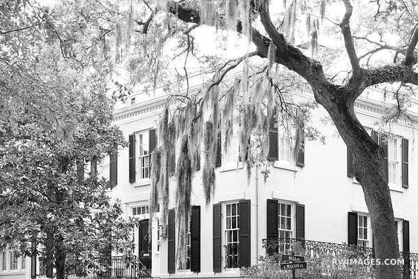 HISTORIC SAVANNAH ARCHITECTURE SPANISH MOSS LIVE OAK TREES SAVANNAH GEORGIA BLACK AND WHITE
